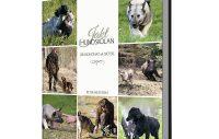 Ny bok om hundkunskap