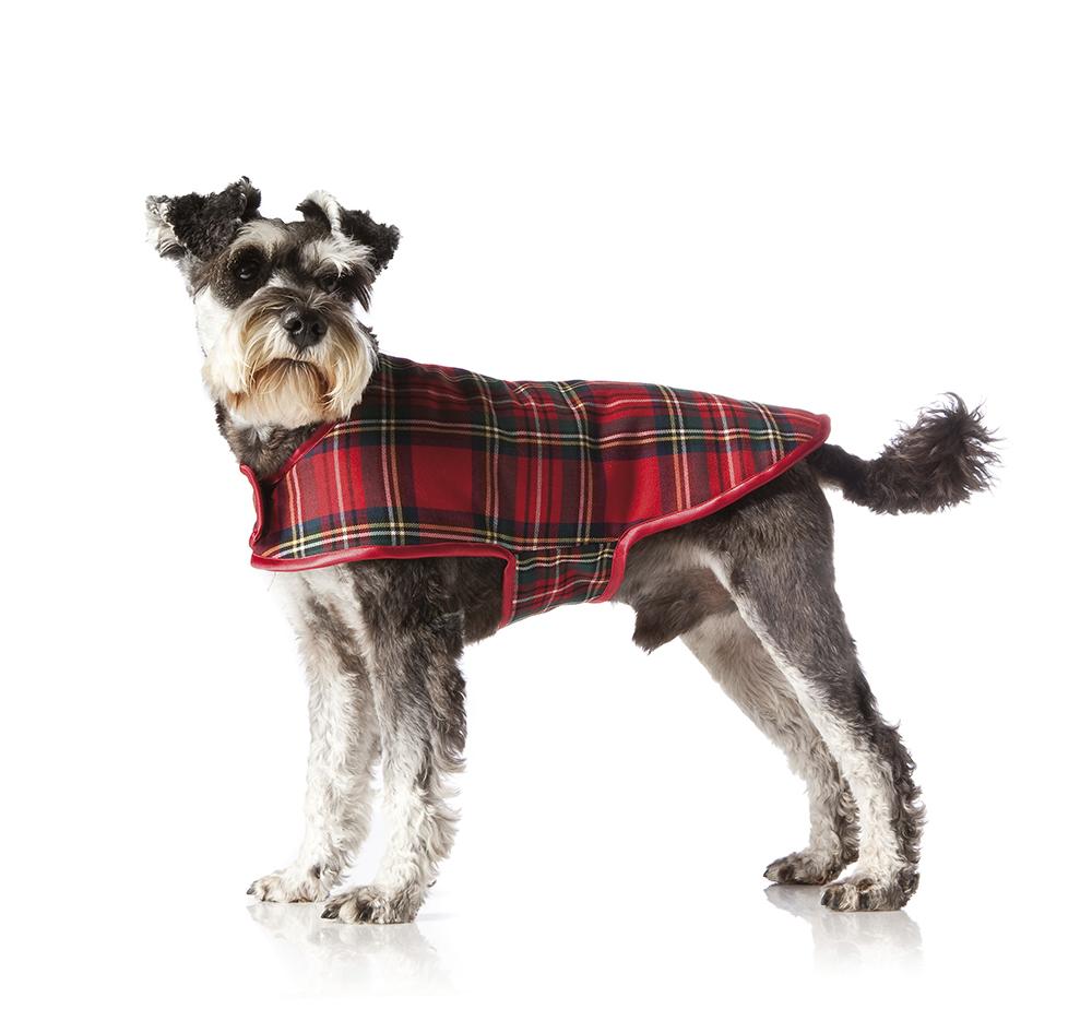 DIY: Sy snyggt täcke till hunden