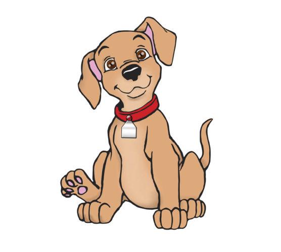 Testa dina hundkunskaper - vet du vad de 15 hundraserna heter?