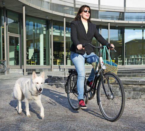 7 goda tips för att cykla med hunden