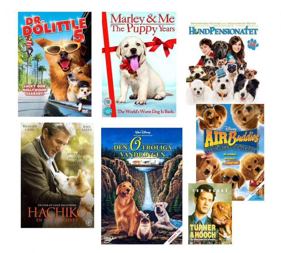 Härliga hundar på film