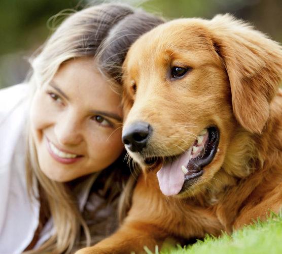 Är vi ansvariga för andras hundrädsla?