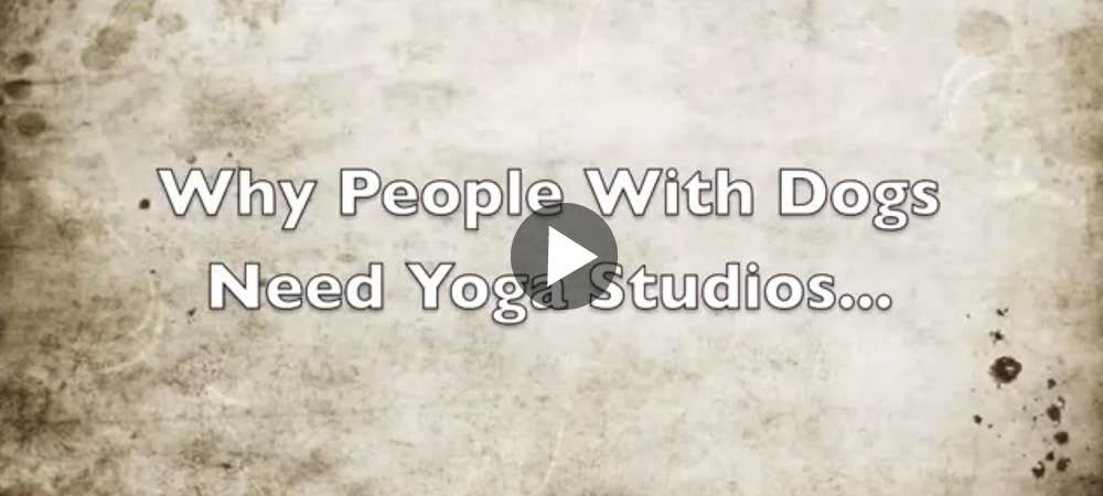 Yoga som hundägare är inte det lättaste ...