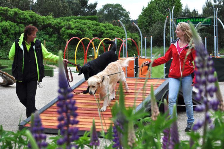 Kul hundpark i Skåne