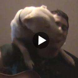 Älskar när husse sjunger
