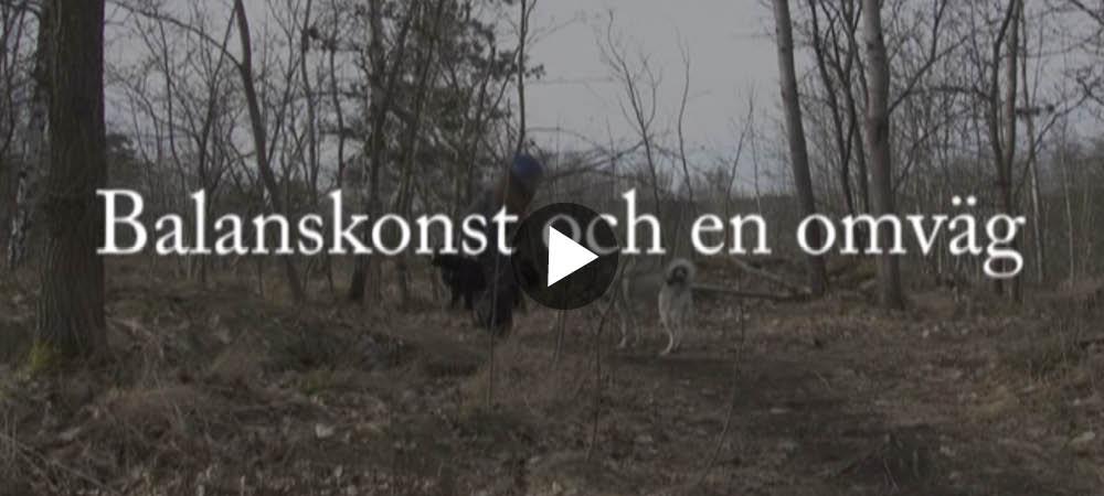 Film: Balansgång är ingen konst