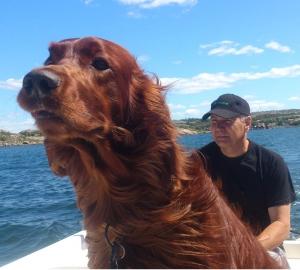 Douglas åker båt med husse Ulf.  Foto Malin Eriksson