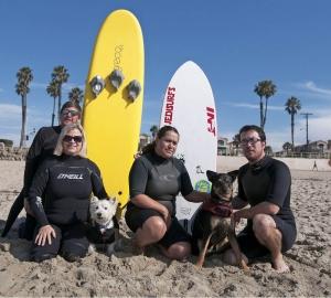Här är surfarna: Namn: Joey, en west highland white terrier, med matte Kay DeLoach. Jedi, en australian kelpie, med matte Katie Seja. Gör: Kay DeLoach driver räddningscentret Westie Rescue of Orange County & Beyond (WROC). Katie Seja reser runt och surfar med Jedi. Webb: Läs mer om Joey på www.westierescueoc.com och Jedi hittar du på www.jedisurfs.com.