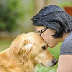 DOG_LOVE