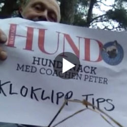 Film_kloklipp