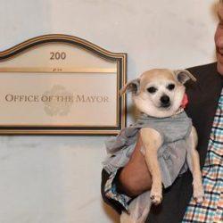 Frida, en hundborgmästare