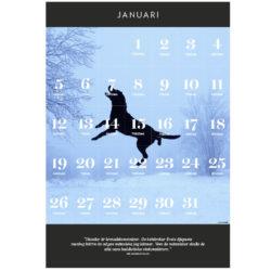 Kalender att skriva ut: Januari