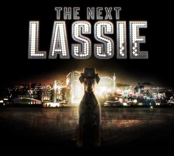 Är din hund The Next Lassie?