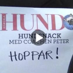 Film_hunden_hoppar