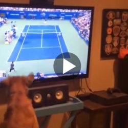 Film_tennis