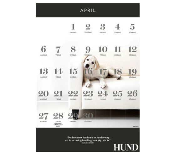 Kalender att skriva ut: April 2015
