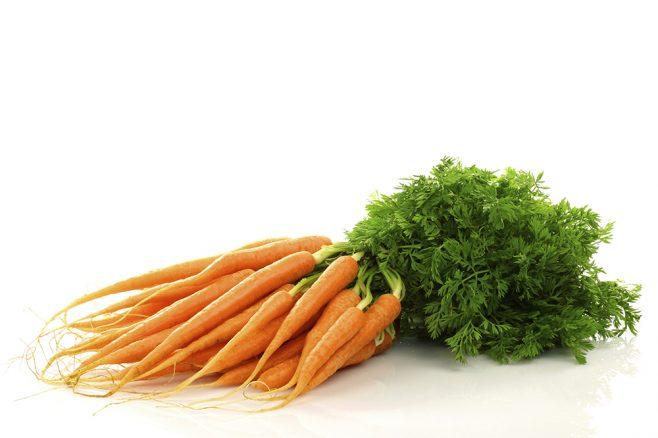 7 nyttiga grönsaker för din hund