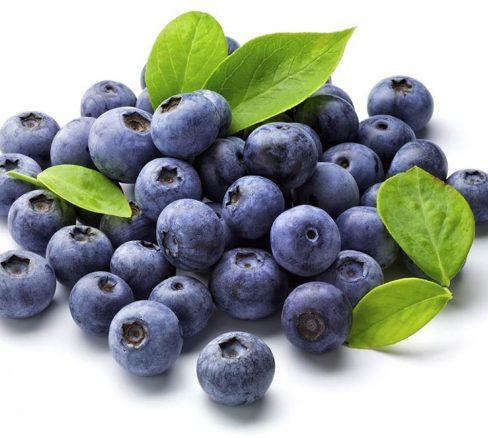 13 frukter och bär hunden kan äta