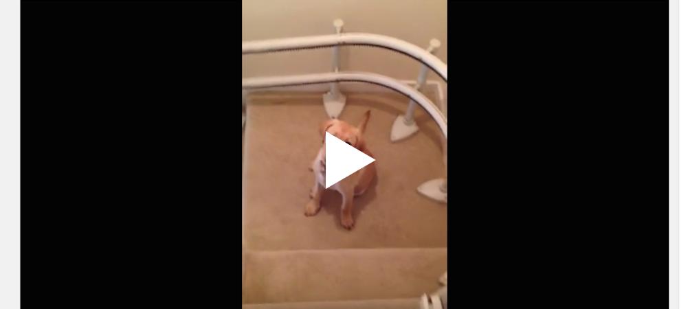 Att glida nerför trappen ...