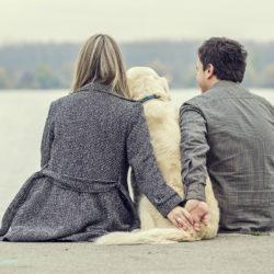 Fem sätt till bättre hälsa med hund