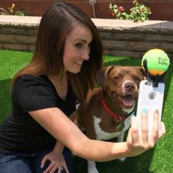 Nu finns det selfiestick för hundar