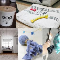 15 gör-det-själv-tips för dig som har hund