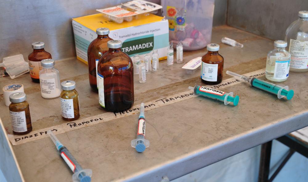 Vaccin.