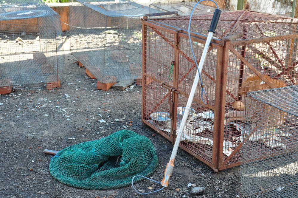 Någon form av hov som används vid infångande av gatuhundar.