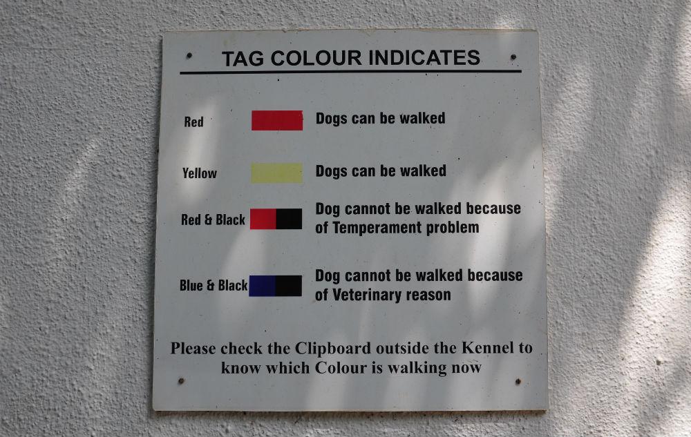 Burar har olika markeringar beroende på hundens status.