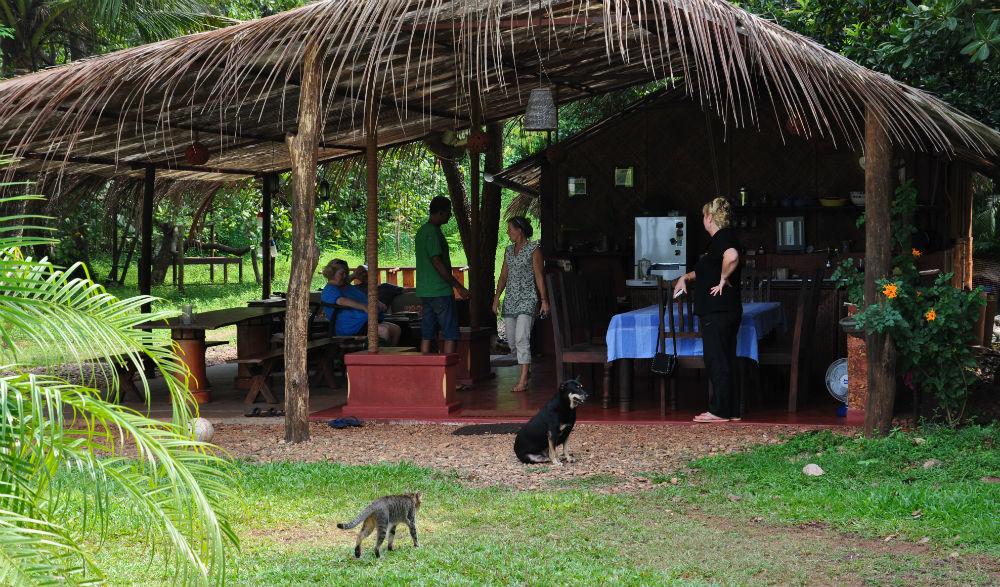 Karen, Pirkko, några gäster och hundarna gör sig redo för lunch i det gröna.