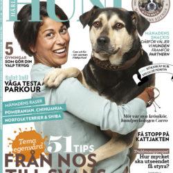 Missa inte vår hundpsykolog i P4!