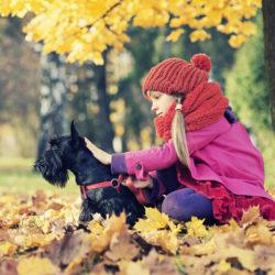 Så blir hund och barn bästisar - 8 tips