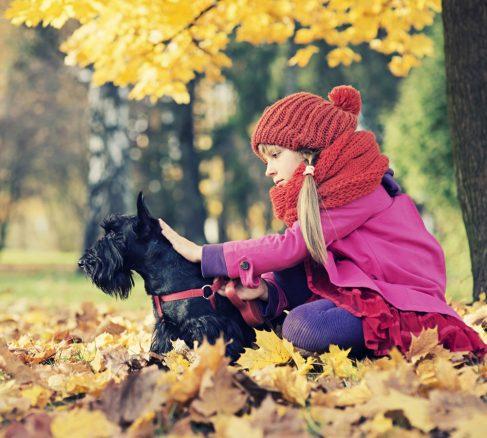 Så blir hund och barn bästisar – 8 tips