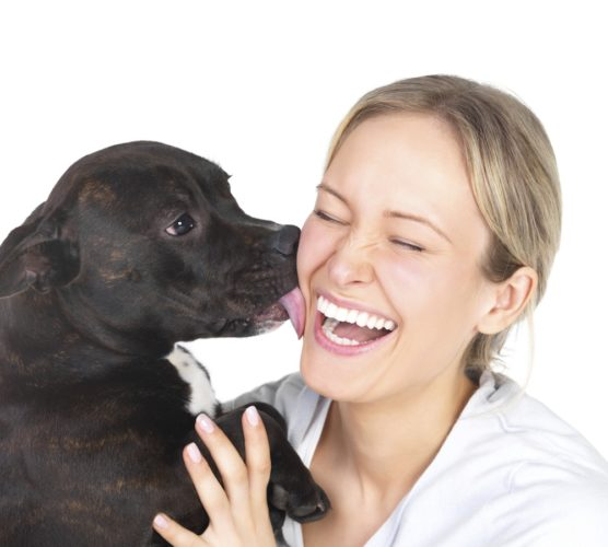 10 tecken på att din hund är din sanna livskamrat