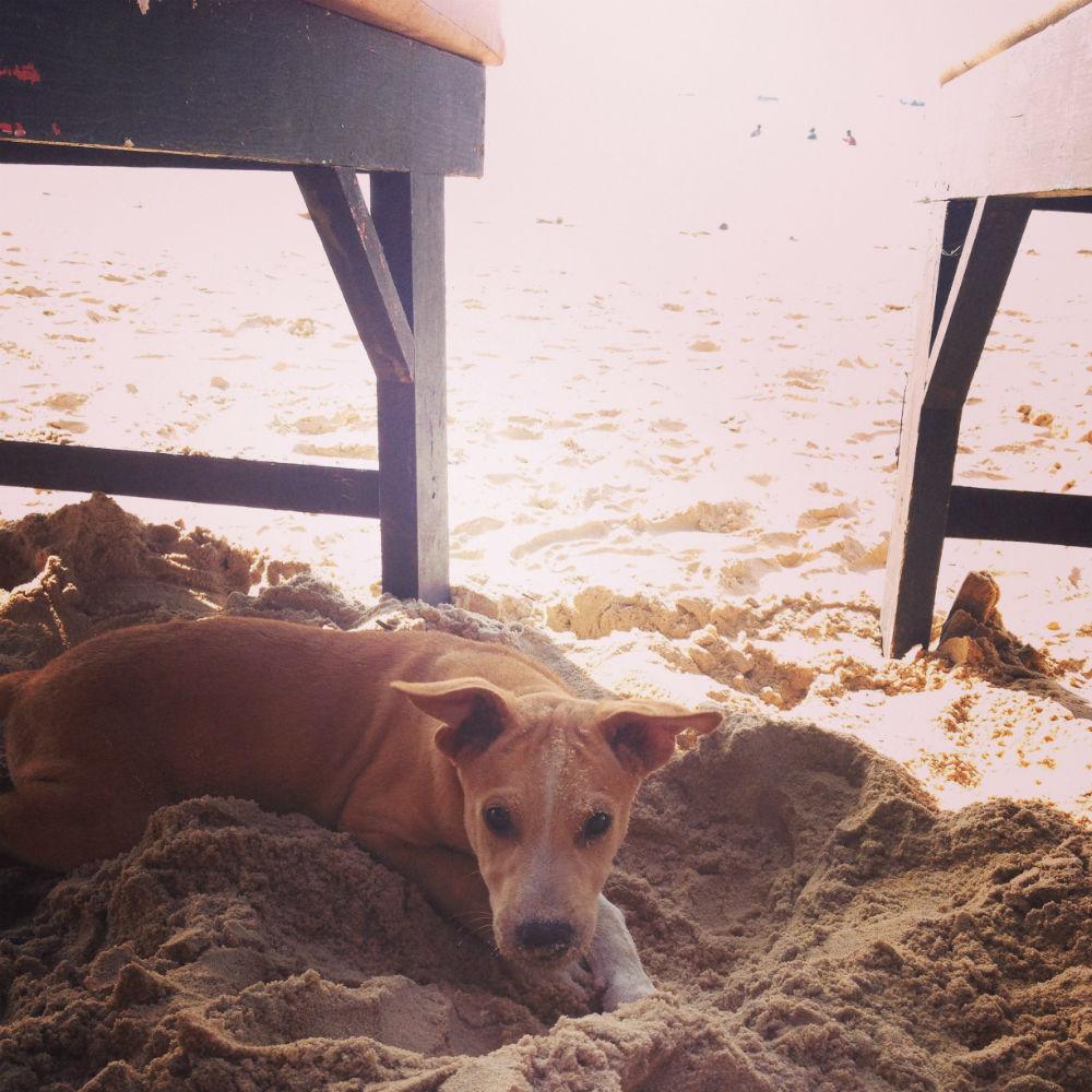 Gräva i sanden är det bästa som finns!