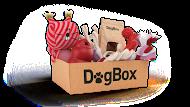 Dogbox_Print_v01_CMYK