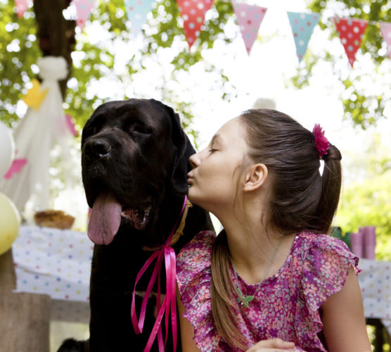 10 tecken på att du är en hundnörd