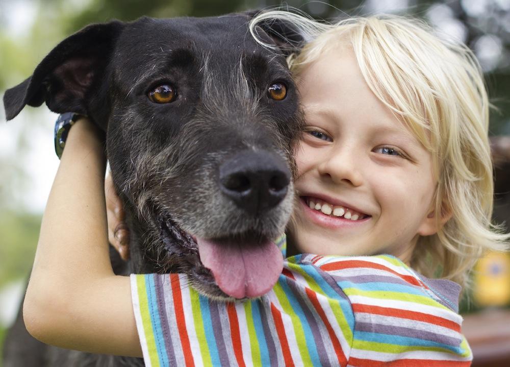 glad pojke och glad hund