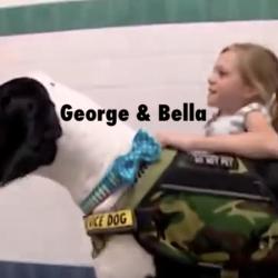 george_bella