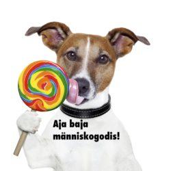 hund med klubba och skylt som säger Aja Baja människogodis!