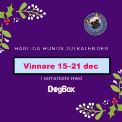 Vinnare i julkalender 15-21 dec