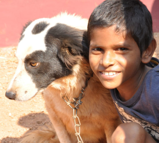 Barnhemmet som adopterade hundar