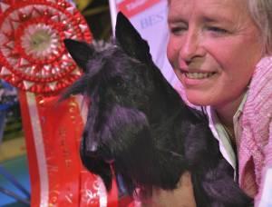 Best in show i MyDOG 1 blev en Skotsk Terrier, Raglan Rachel Rose, ägs av Cristiana Capece.
