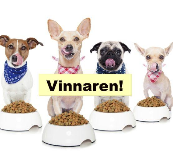 """Hundar med mat och skylt med """"Vinnaren"""""""