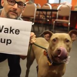 """Moby med hund och skylt som det står """"Wake up"""" på"""