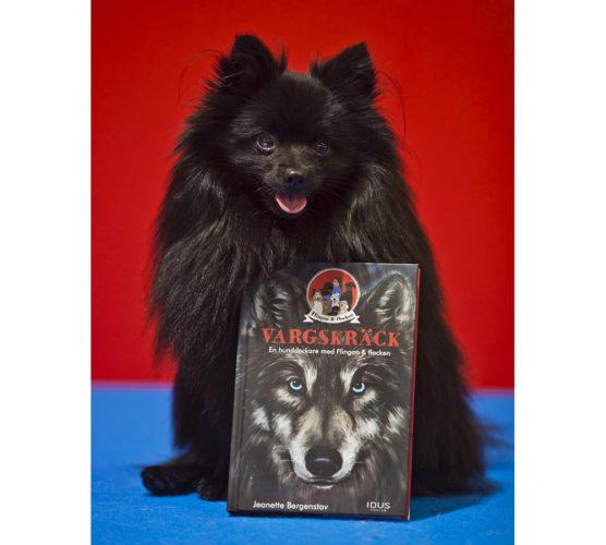 Vinnaren i The Next Lassie blev kleinspitzen Zingo