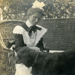 Långt in på 1900-talet sov många svenska hundar i kalla hundkojor. I dag har de flyttat in i stugvärmen, soffan, sängen…