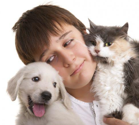 Pojke med hundvalp och kattunger
