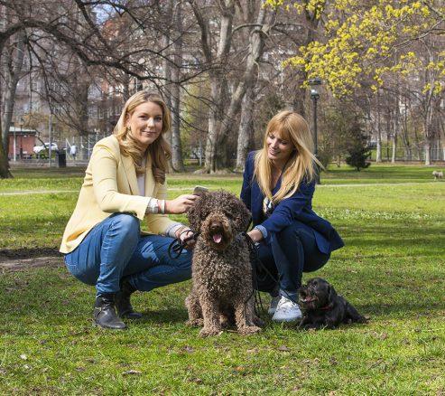 Grundarna av hundappen Happytail med en hund
