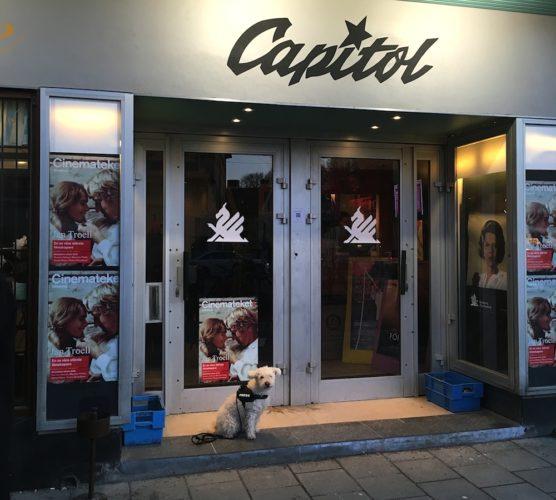 Redaktionshunden Muffin uanför bio Capitol i Gbg